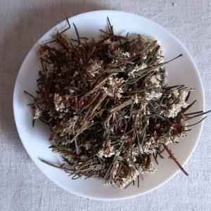 Багульник болотный (Lédum palústre) (цвет) 50 г.