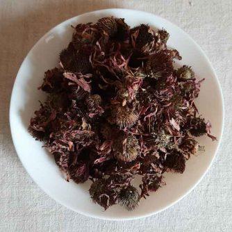 Эхинацея пурпурная (цвет) 50 г.
