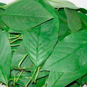 Вишня листья (порезанные 2-4 мм) 50 г.
